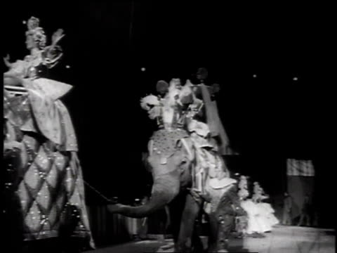 1957 elephant parade at circus / new york, usa - two animals stock videos and b-roll footage