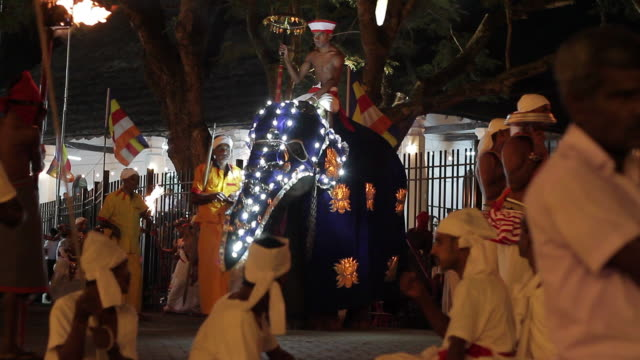 ms ts elephant parades in buddhist festival or procession 'esala perahera' (festival of tooth) audio / kandy, central province, sri lanka - sri lankan culture stock videos & royalty-free footage