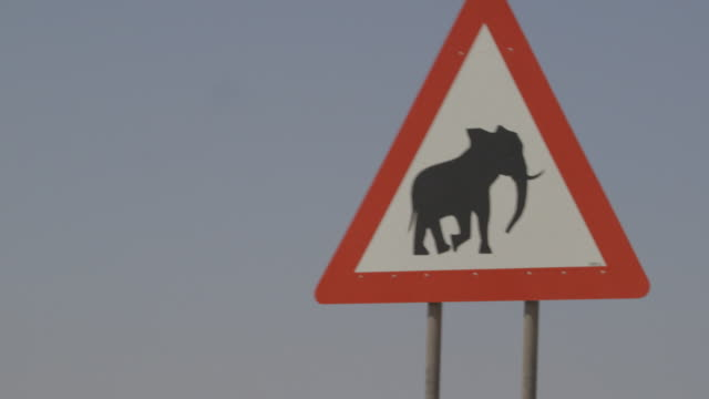 elephant road sign - animal crossing sign stock videos & royalty-free footage