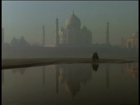 Elephant walks though river with Taj Mahal in background Agra