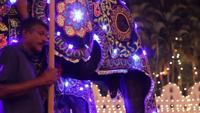 ms elephants and mahouts performing in buddhist festival or procession 'esala perahera' in front of 'temple of tooth' audio / kandy, central province, sri lanka - sri lankan culture stock videos and b-roll footage