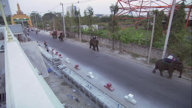 vídeos y material grabado en eventos de stock de ha elephants walking on busy road carrying riders and loads / bangkok, thailand - grupo pequeño de animales