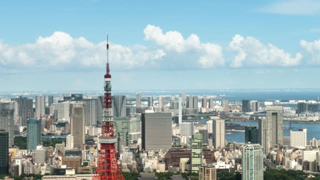 t/l ws ha zi elevated close-up view of tokyo city skyline featuring with landmark tokyo tower - cityscape点の映像素材/bロール