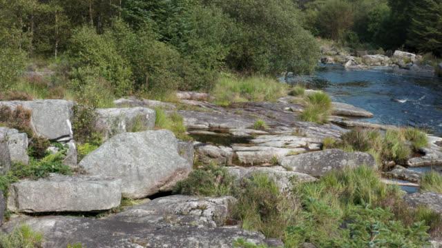 vídeos y material grabado en eventos de stock de vista elevada de un pequeño río escocés en un bosque - johnfscott