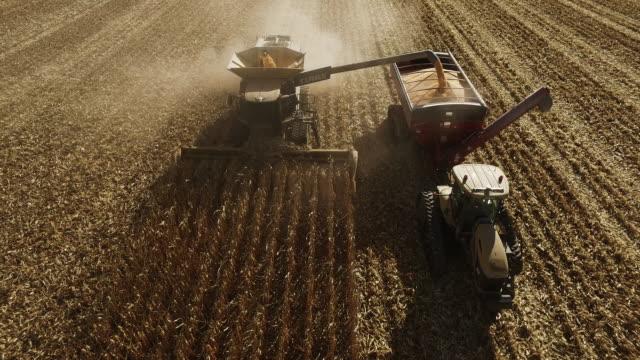 Elevated view of combine harvesting ripe GMO corn (maize).