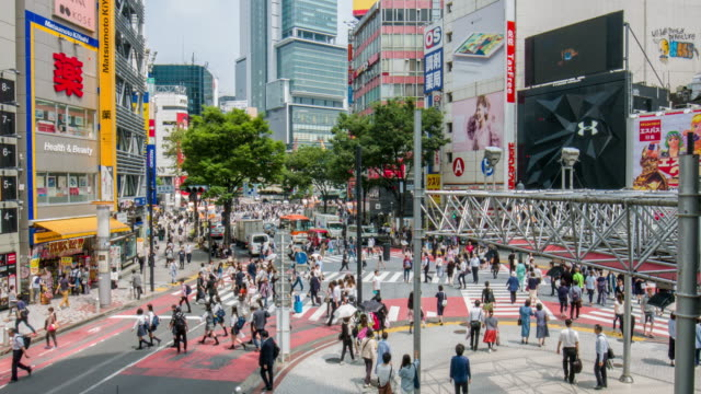 elevated view of people crossing in the streets of tokyo - shibuya ward stock videos & royalty-free footage