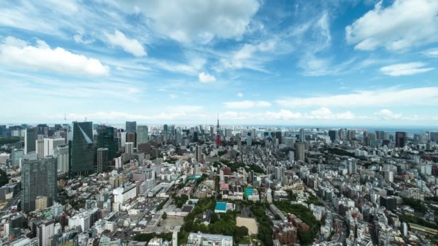 t/l ws ha zi elevated view of tokyo city skyline featuring with landmark tokyo tower - ズームイン点の映像素材/bロール