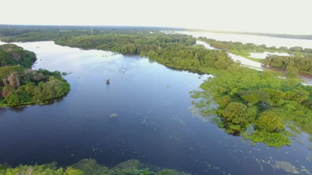 stockvideo's en b-roll-footage met elevated view of tropical wetlands in costa rica - color negro