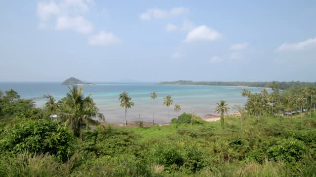 elevated view over palm beach - gulf of thailand stock videos & royalty-free footage