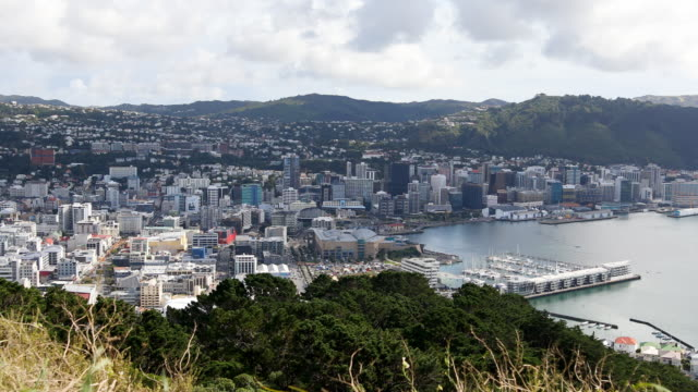 Elevated View Overlooking Wellington New Zealand