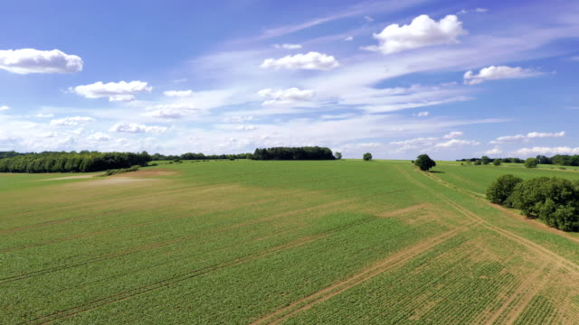 elevating drone footage of a field in rural uk - horizon over land stock videos & royalty-free footage