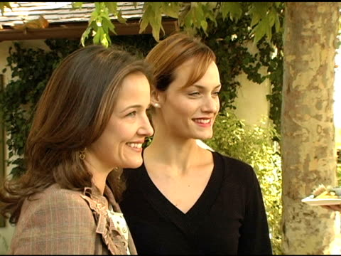 elizabeth wiatt and amber valletta at the eco salon on the children's health crisis in america hosted by the nrdc and ralph lauren at brian and gigi... - バレッタ点の映像素材/bロール