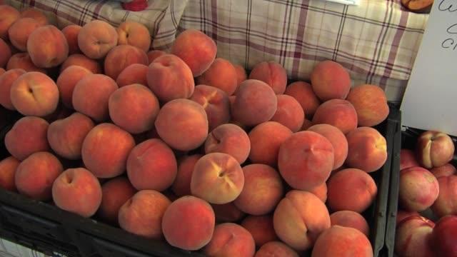 elk grove peach festival. - モモ点の映像素材/bロール