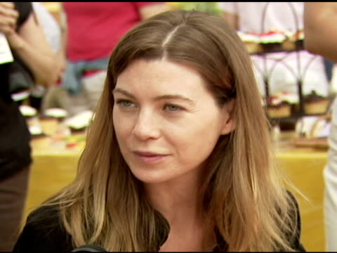 Ellen Pompeo at the 'A Time For Heroes' Celebrity Picnic and Carnival to Benefit the Elizabeth Glaser Pediatric AIDS Foundation at Wadsworth Theatre...