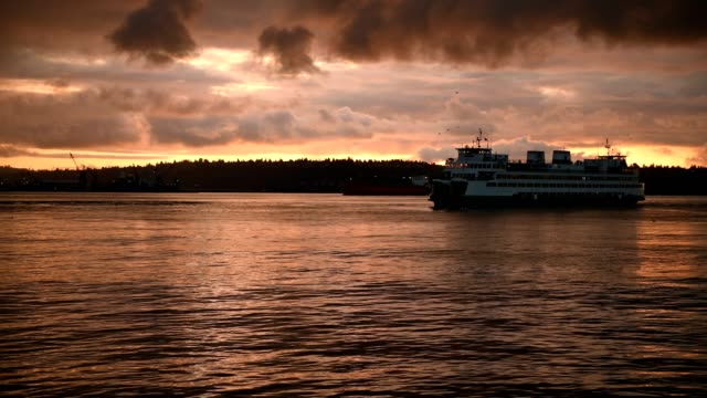 elliott bay sunset - elliott bay stock videos & royalty-free footage