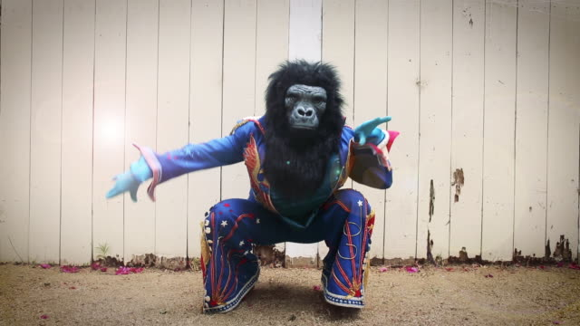 elvis impersonator in gorilla mask dancing - slapstick stock-videos und b-roll-filmmaterial