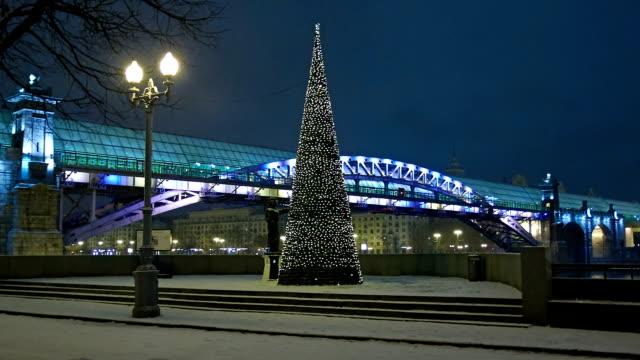 Embankment at night in the winter with Christmas tree