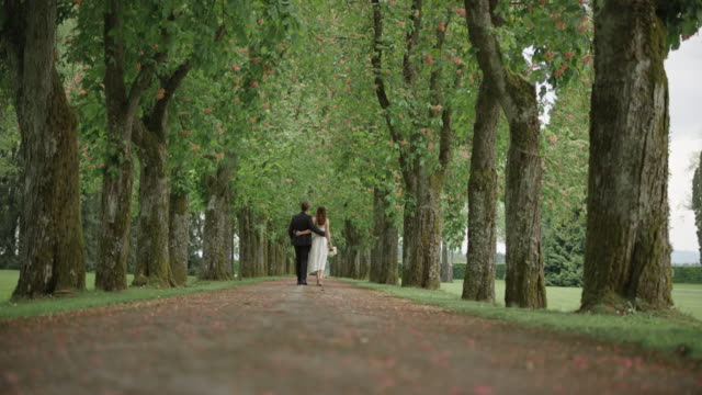 slo mo ds embraced newlyweds walking down the tree avenue - wedding dress stock videos & royalty-free footage