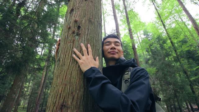 vídeos y material grabado en eventos de stock de abrazar un árbol - conservacionista
