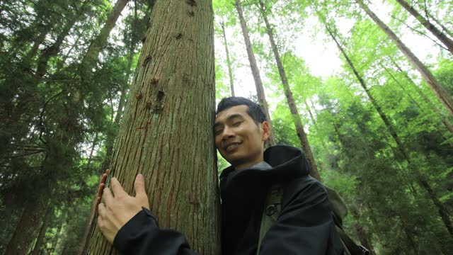 embracing a tree - tree hugging stock videos & royalty-free footage