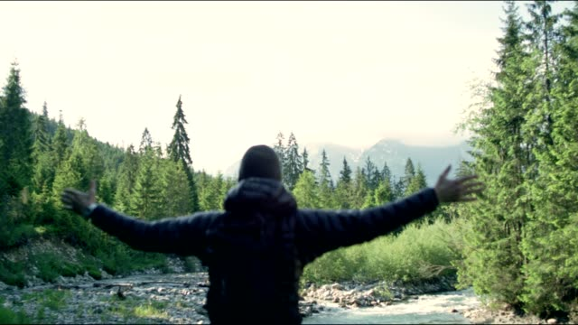 embracing nature - man enjoying view with opened arms - arms outstretched stock videos and b-roll footage