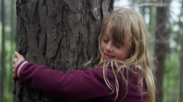 embracing tree - hugging tree stock videos & royalty-free footage