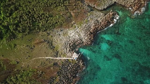 Smaragdgrüner Ozean trifft felsige Küste unter Drohne
