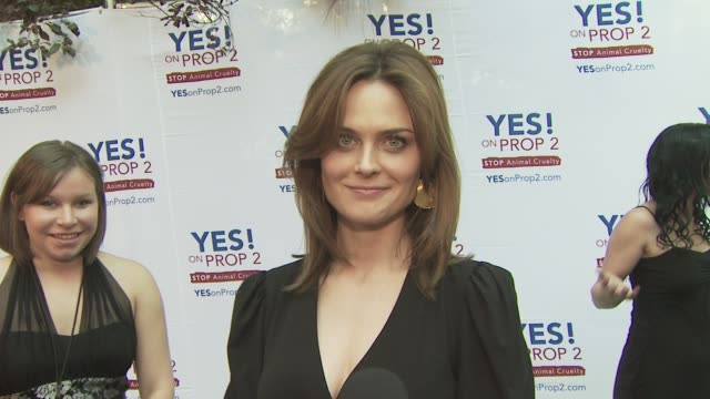 emily deschanel at the ellen degeneres and portia de rossi host yes on prop 2 party at los angeles ca - amrapali stock videos & royalty-free footage