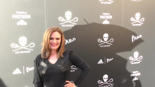 emily deschanel at the sea shepherd conservation society's 40th anniversary gala for the oceans at montage beverly hills on june 10, 2017 in beverly... - モンタージュ・ビバリーヒルズ点の映像素材/bロール