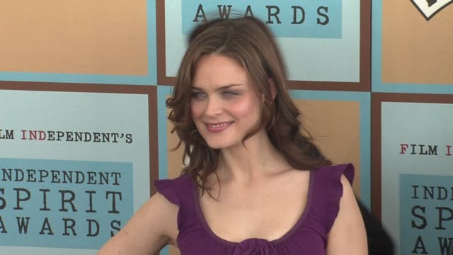 emily deschanel at the the 21st annual ifp independent spirit awards in santa monica california on march 4 2006 - ifp independent spirit awards stock videos and b-roll footage