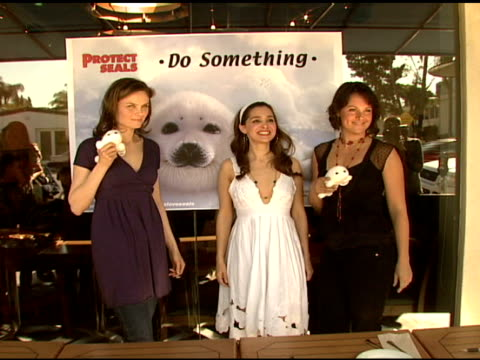 emily deschanel, gina philips, and darcy halsey at the celebrity save the seal day: press conference hosted by celebrities against the seal hunt on... - aquatic organism stock videos & royalty-free footage