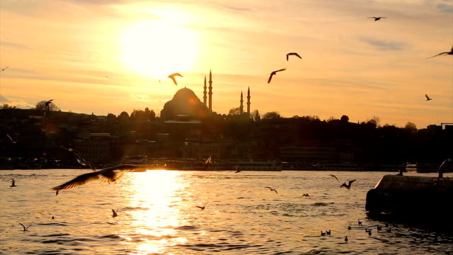 eminönü ferry at sunset - bosphorus stock videos & royalty-free footage