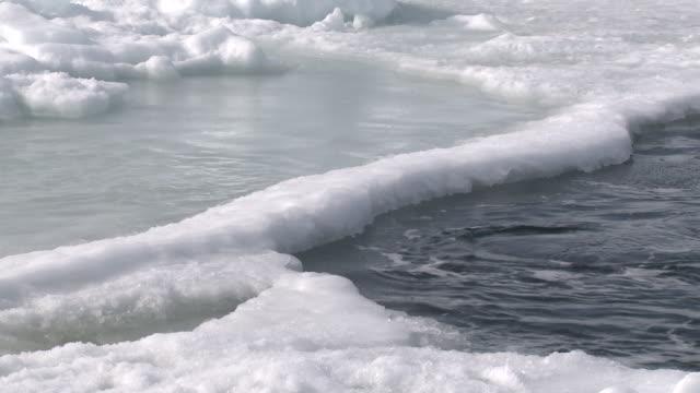 emperor penguins (aptenodytes forsteri) exiting water, cape washington, antarctica - cape washington stock videos & royalty-free footage