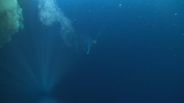 emperor penguins (aptenodytes forsteri) swimming under sea ice and past camera with bubbles, underwater, cape washington, antarctica - cape washington stock videos & royalty-free footage