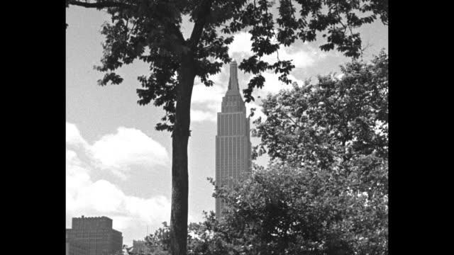 Empire State Building seen through tree branches