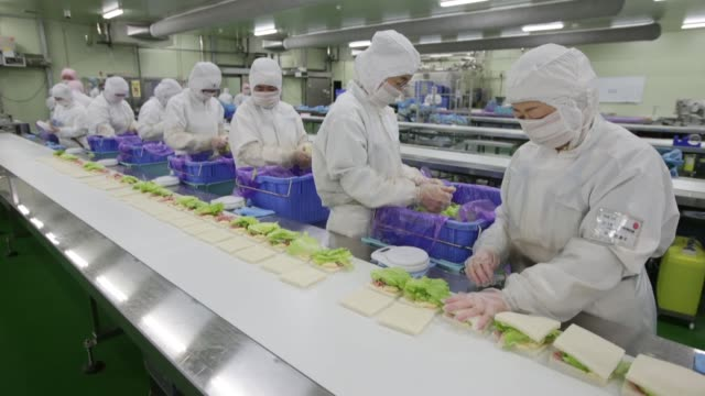 employee place lettuce leaves in the fillings of hamandcheese sandwiches for seven i holdings co's 7eleven convenience stores on the production line... - sandwich stock videos & royalty-free footage