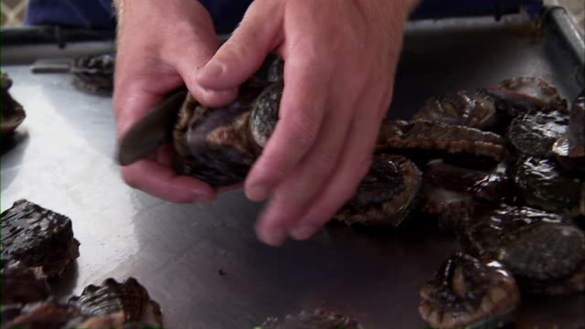 Employee removing abalone from their shells.