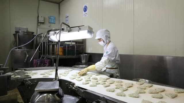 employees cut pieces of giant squid and prepare squid cutlets at the charmson foods corp factory in busan, south korea, on thursday, june 4, 2015... - pollock fish stock videos & royalty-free footage