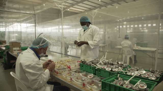 vídeos y material grabado en eventos de stock de employees in lab coats and face masks work at assembly line at cpap ventilators factory in pretoria, south africa on thursday, august 27 2020. the... - equipo respiratorio