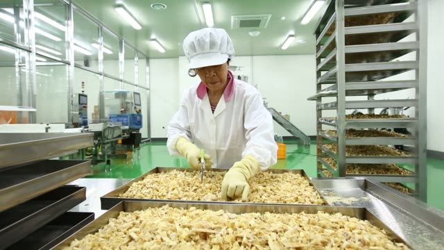 employees inspect frozen fish filets and squid cutlets as they move along a conveyor belt at the charmson foods corp factory in busan south korea on... - anchovy stock videos & royalty-free footage