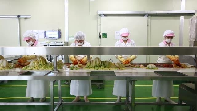 Employees season kimchi on the production line at the Ogawon Co organic kimchi factory in Yangpyeong South Korea on Wednesday Sept 2 2015 Shots CU of...