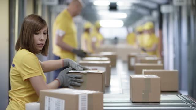 ds employees sorting packages on the conveyor belt - conveyor belt stock videos & royalty-free footage
