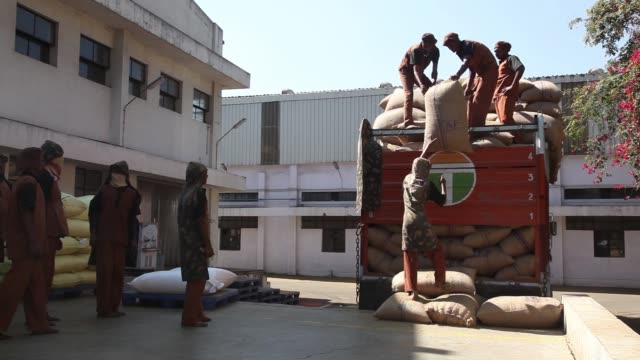 employees unload sacks of unprocessed coriander seeds from a truck at a suhana spice factory in pune, maharashtra, india, on monday, nov. 28 a worker... - unloading stock videos & royalty-free footage