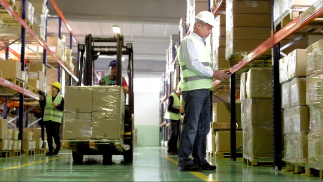 Employees Working In The Warehouse