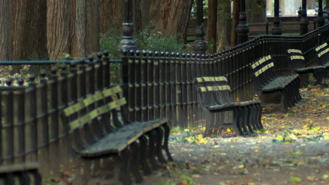 ws selective focus empty benches in central park / new york city, usa - bench stock videos & royalty-free footage