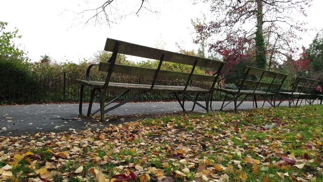 empty benches on an autumn day in dulwich park on november 16, 2020 in london, england. - bench stock videos & royalty-free footage