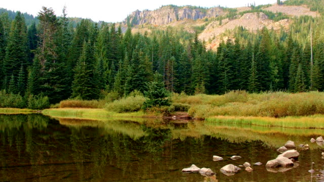 stockvideo's en b-roll-footage met empty campsite by lake and tree reflection mirror lake mt. hood oregon cascades 15 - oregon amerikaanse staat