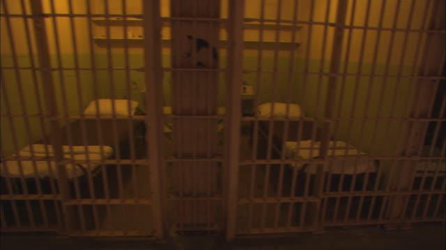 vídeos y material grabado en eventos de stock de empty cells line a hallway in alcatraz. - celda de cárcel