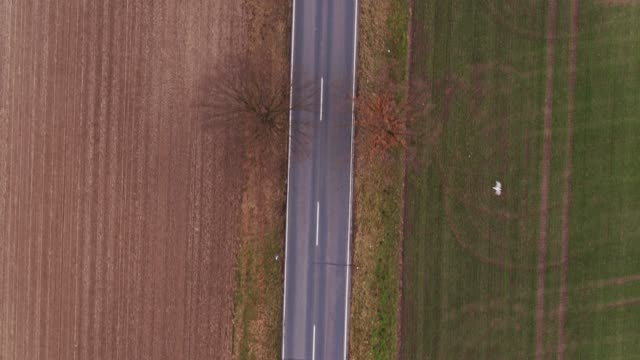 empty country road - drone shot - bare tree stock videos & royalty-free footage