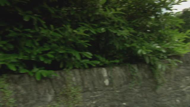 WS PAN Empty country road in Ireland / Rathdum, Ireland